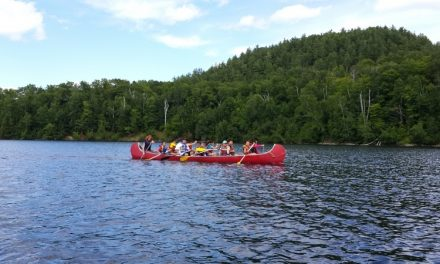 Camps linguistiques (été et hiver)